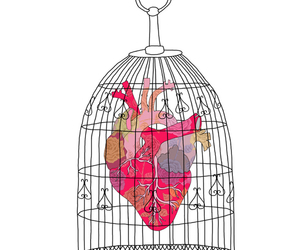 heart, cage, and art image