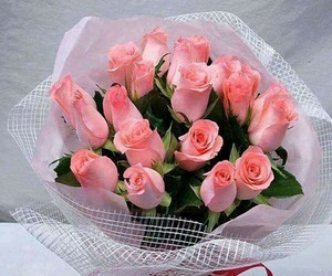 flowers and beautiful image