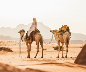 camels, desert, and girl image