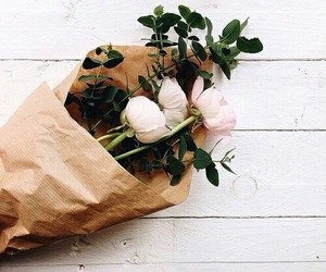 dark, flower, and soft image