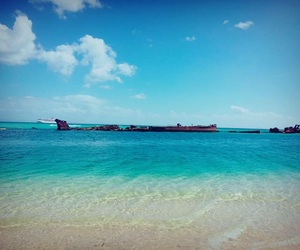 beach, blue sky, and Island image