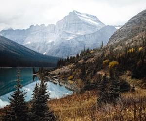 adventure, beautiful, and field image