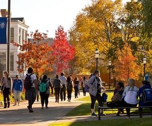 school and university image