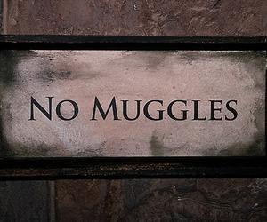 harry potter, muggles, and no muggles image