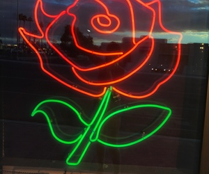 neon lights and roses image