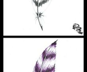 color, drawing, and feather image