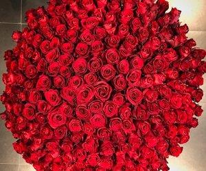 bouquet, mavaga, and chic image