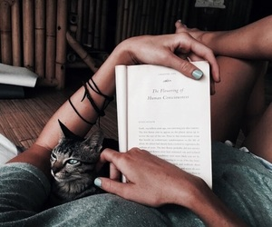 book, read, and relax image