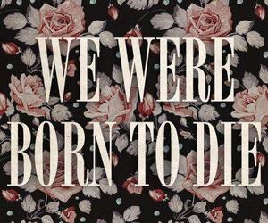 lana del rey, born to die, and die image