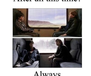 harry potter, always, and ron image