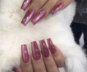 fur, gel, and nails image