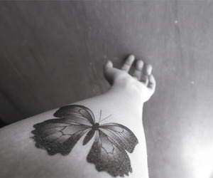 beautiful, black and white, and butterfly image
