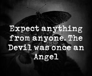 angel, animals, and black image