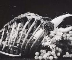 b&w, death, and strange image