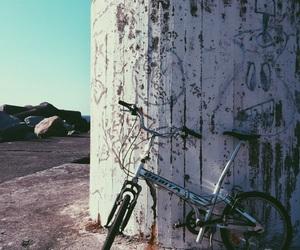 bicicle, bike, and landscape image