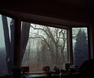 autumn, window, and room image