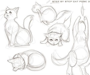 cat, draw, and how to image
