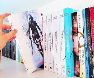 book, livros, and estante de livros image