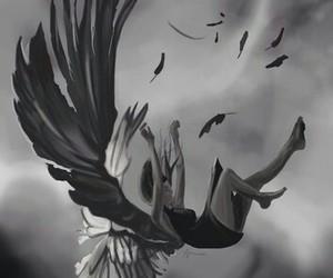 angel, fallen angel, and hush hush image
