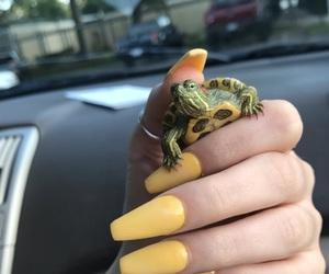 nails, green, and yellow image