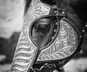 armor, black and white, and armour image