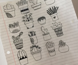 cactus, cool, and draw image
