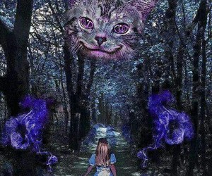 alice, lsd, and psychedelic image