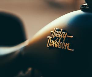 harley davidson and moto image