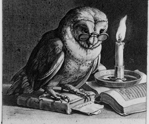 books, vintage, and owls image