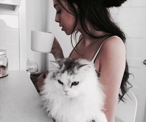 cat, girl, and animal image