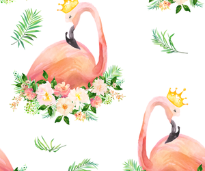 animal, flamingo, and judy quintero image