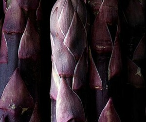 asparagus, plum, and purple image