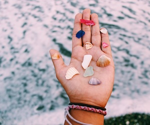 beach, photographs, and shells image