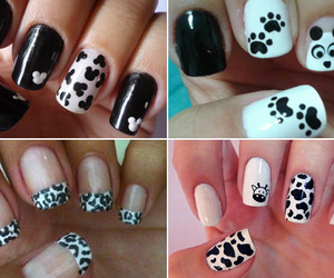 nails, unhas, and white image