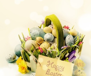 easter, happy, and 🐣 image