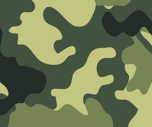 background, camouflaged, and green image