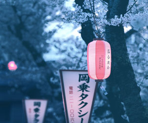 amazing, japan, and landscape image