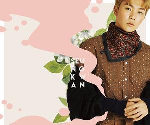 17, Seventeen, and seungkwan image