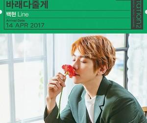 exo, SM, and baekhyun image