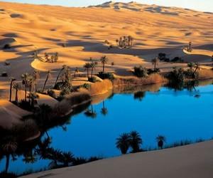 Algeria and Sahara image