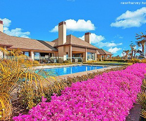house, flowers, and pool image