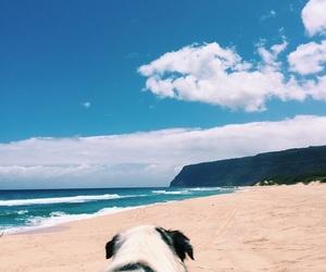 adventure, beach, and boho image