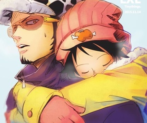 one piece, lawlu, and Law image