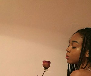 rose, girl, and aesthetic image
