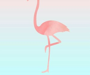 animal, blue, and pink image