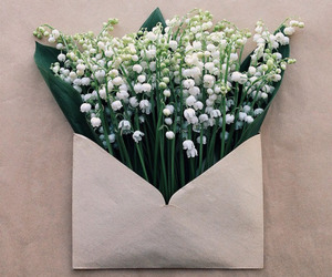 flowers, Letter, and white image