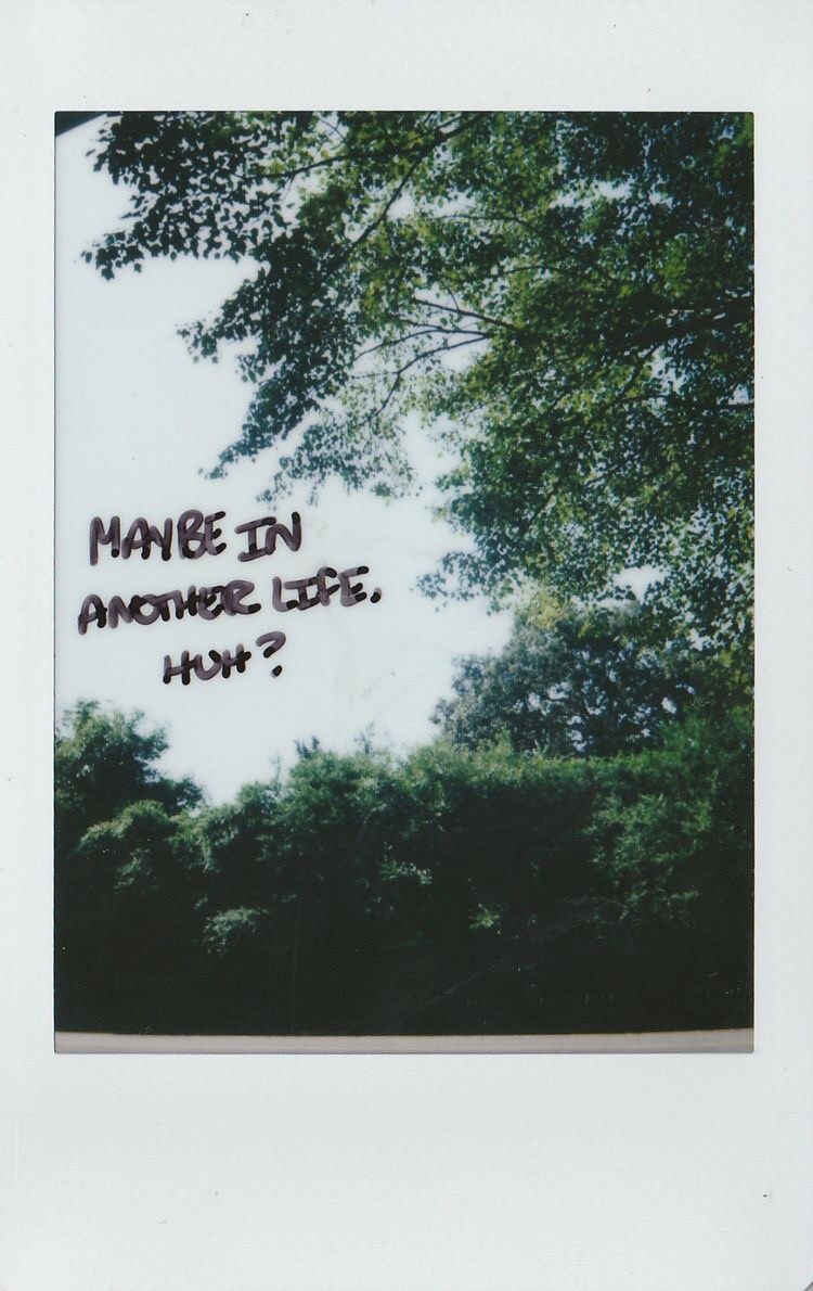 quotes, polaroid, and aesthetic image