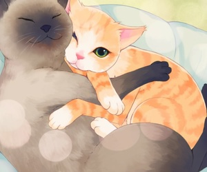 cat, MM, and otome game image