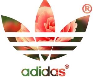 adidas, flower, and orange image