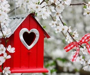bird nest, cherry blossom, and flowers image